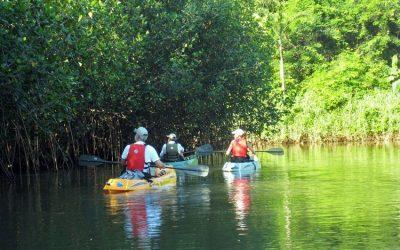 Wildly Fun: Tamarindo Wildlife Refuge