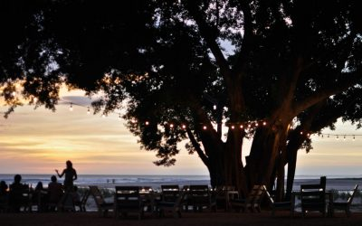 Looking for Great Tamarindo Meeting Space? Try Pangas!