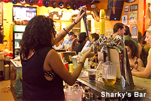 Sharkys Bar Tamarindo