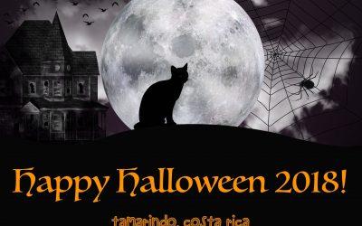 Tamarindo Halloween 2018: 9 Halloween Parties!